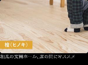檜(ヒノキ)